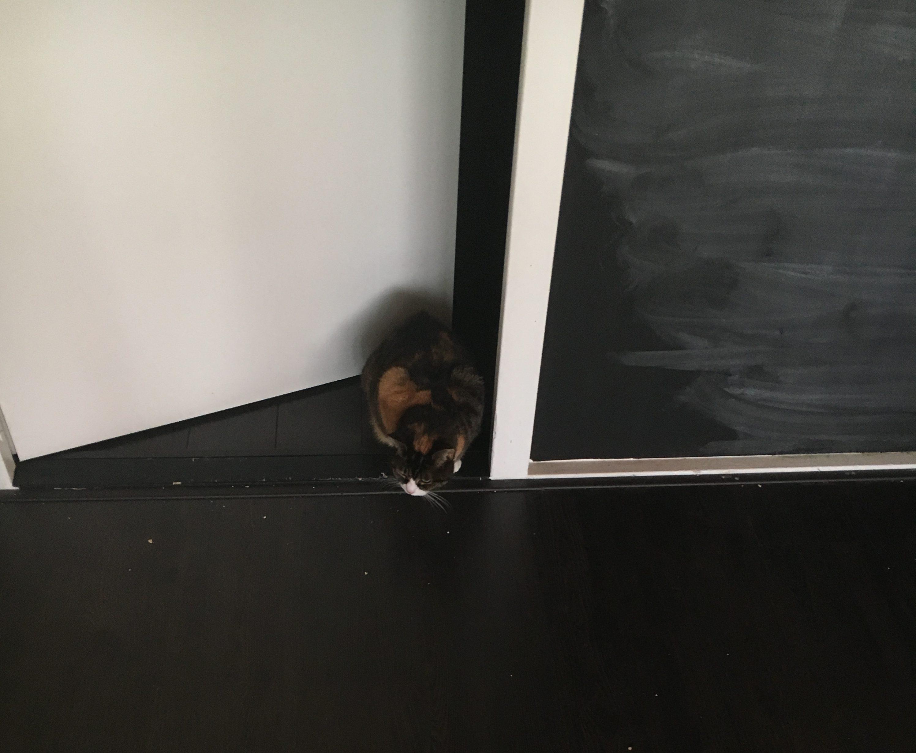 Charlie en de deur